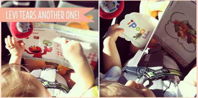 toddler ripping lift the flap book