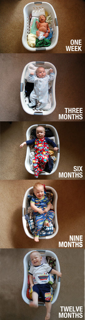baby photo series in laundry basket