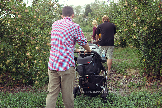 Kimmel Orchard Apple Picking Nebraska