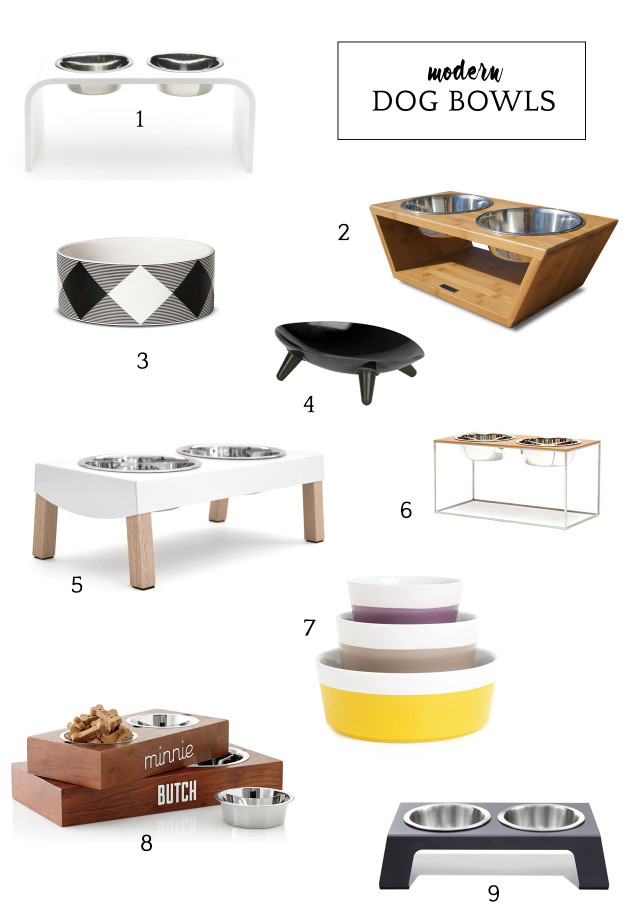 Modern dog bowls to complement your home decor | A Girl Named PJ