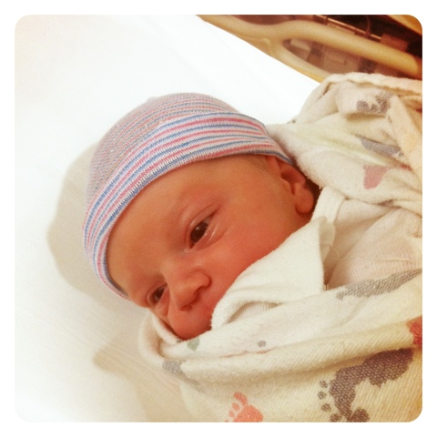 levi newborn.jpg