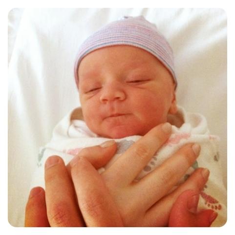 chubby newborn face.jpg