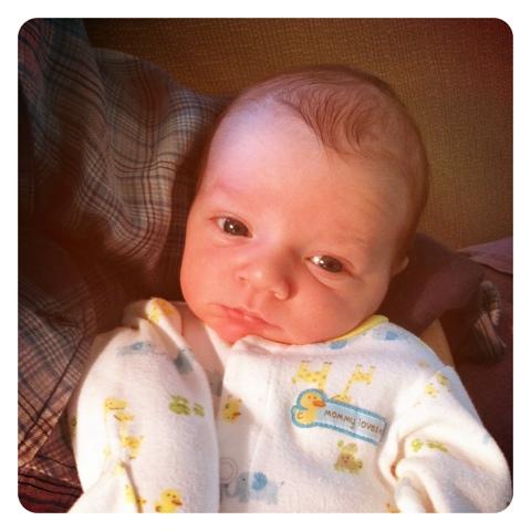 eight days old.jpg