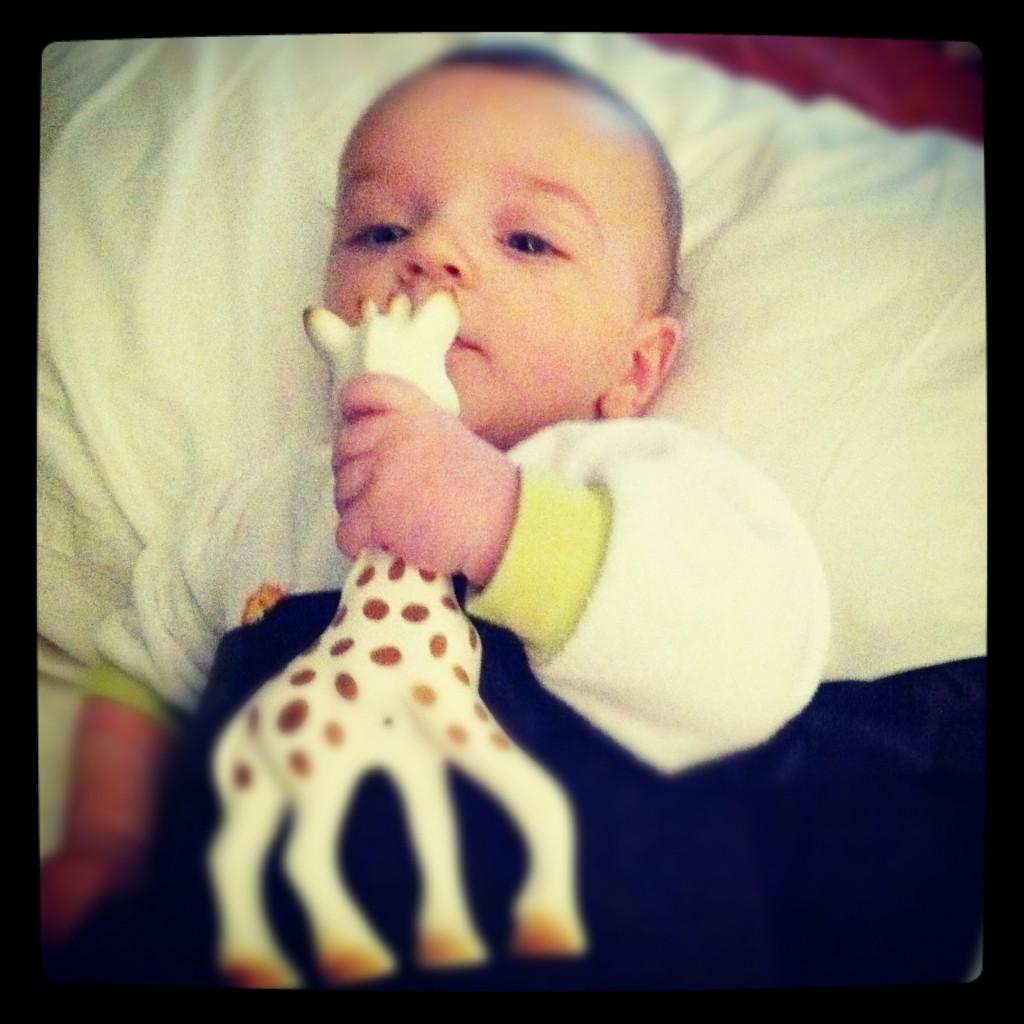 baby-grabbing-sophie-the-giraffe