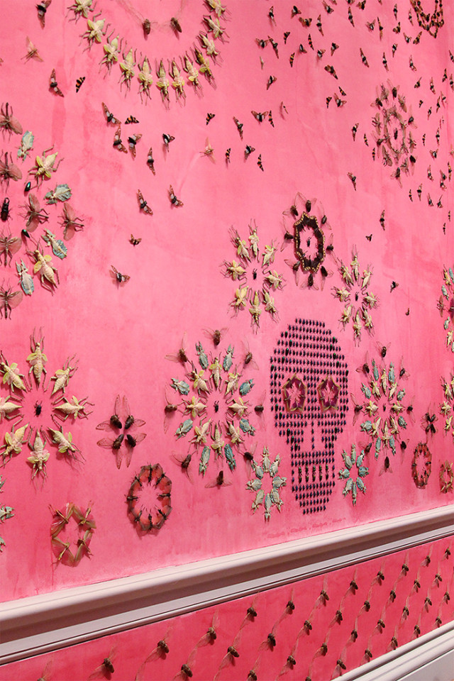Wallpaper pattern made from dead bugs at The Renwick Gallery Wonder exhibit on A Girl Named PJ