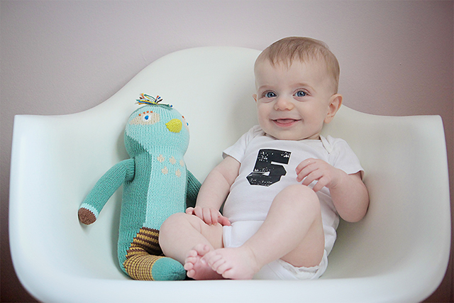 five months old baby photo