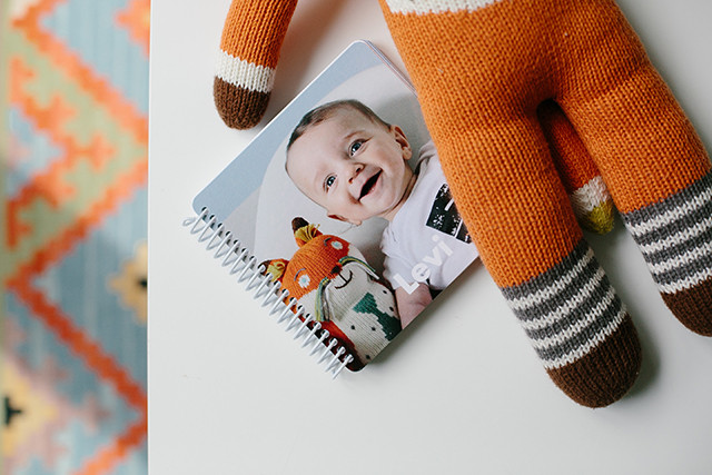 Levi's first year baby book | A Girl Named PJ