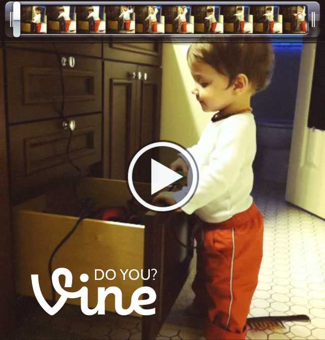 Do you Vine? #vineapp bunnyanddolly.com
