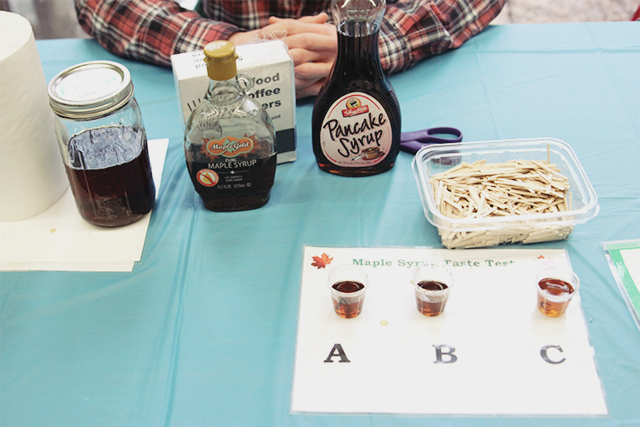 Maple Syrup Taste Test | A Girl Named PJ
