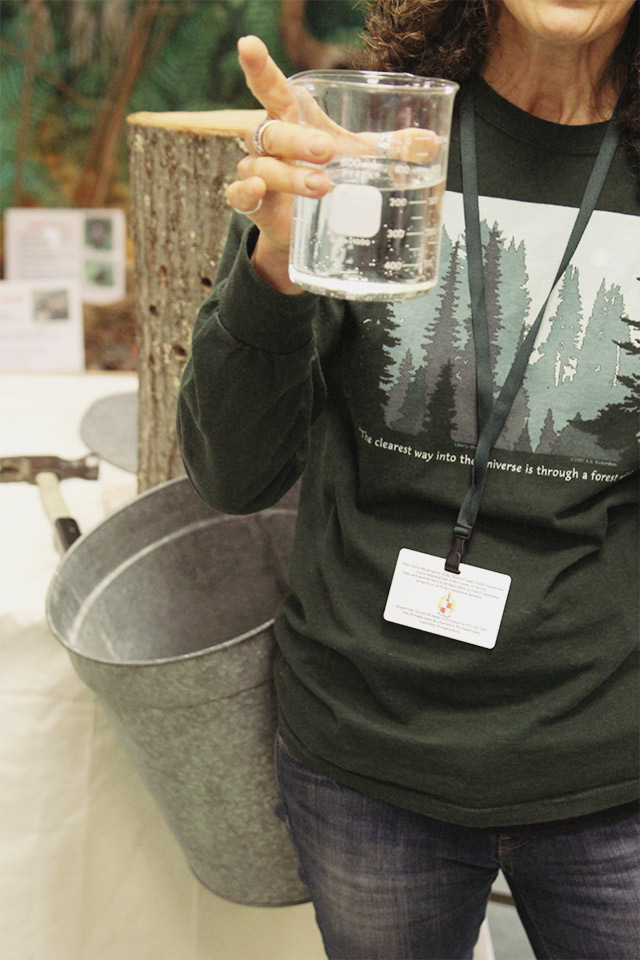 Maple sugaring in New Jersey | A Girl Named PJ