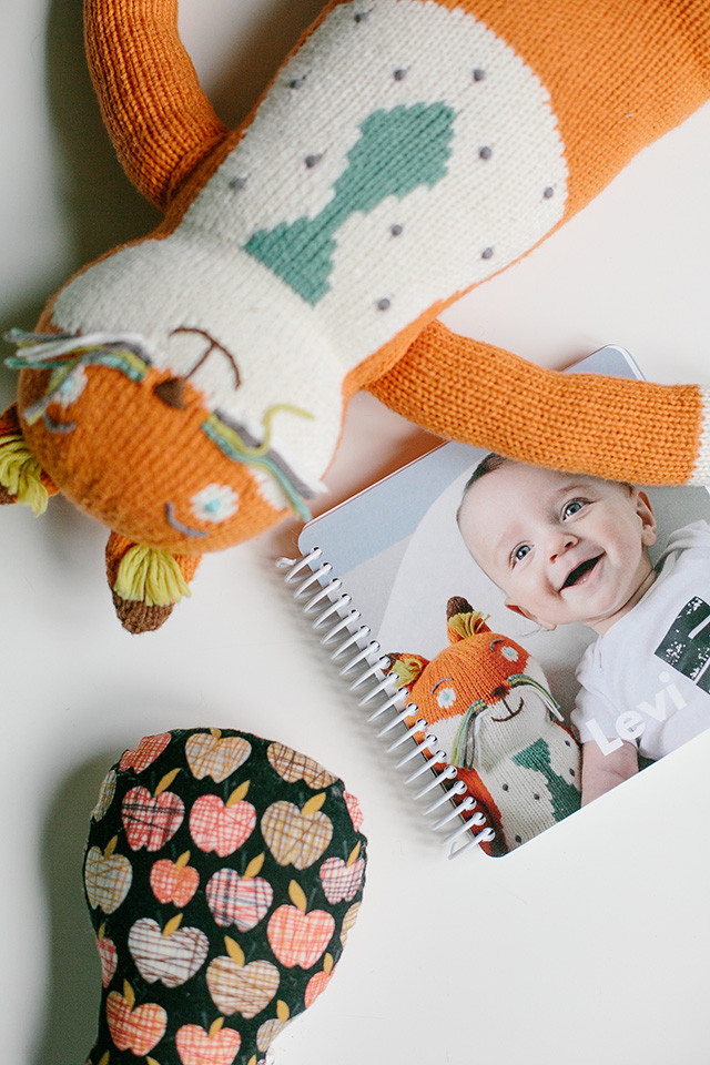 Create a Pinhole Press personalized board book with baby's first year photos | A Girl Named PJ