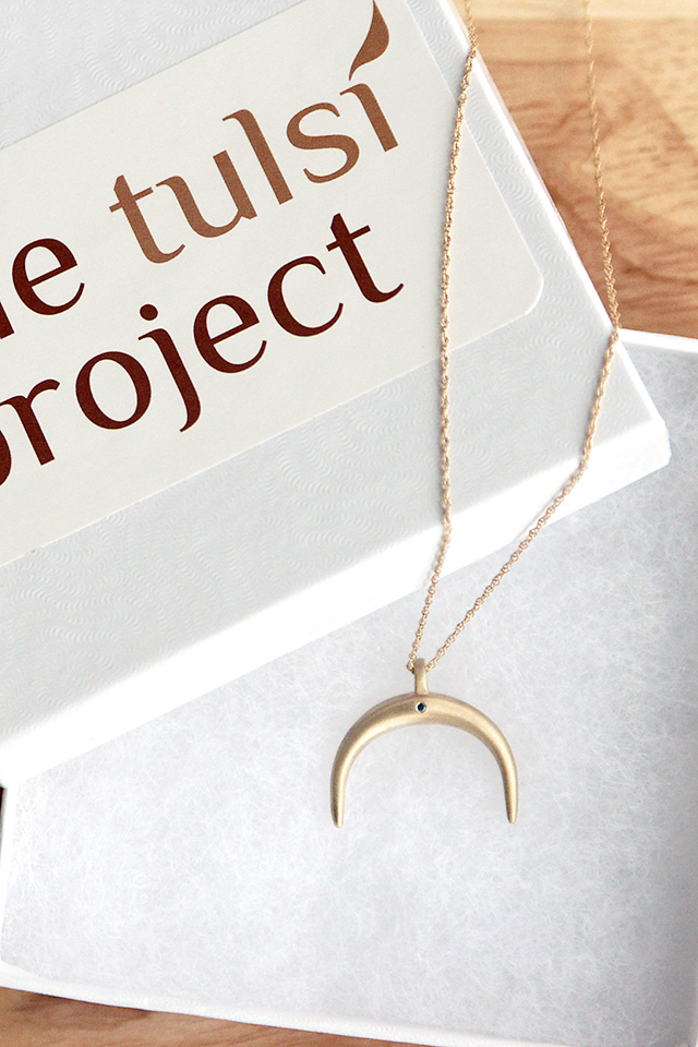 The Nandi Necklace from The Tulsi Project | A Girl Named PJ
